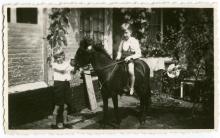 Paul, zoon van Georges Kolb, met pony op de binnenkoer van de gezinswoning, Aldestraat 18 (foto: privécollectie)