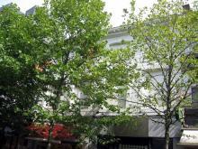 De Klock, Koning Albertstraat 16-18 (foto, Sonuwe, 02-09-2011)