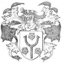 Familiewapen Schoepen, Sint-Truiden (uit: Limburgse families en hun wapen (1973), p. 89)