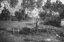 Jannes Metten in het begin onzer eeuw, samen met zijn hond en kruiwagen, met bezems geladen (uit: Waar de Heksen hun Bezems huurden… / Naarke vertelt zijn Geschiedenis… (1953), p. 1)